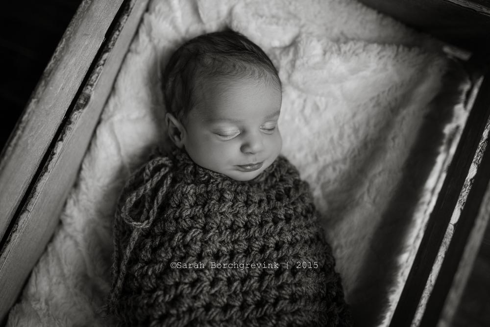 infant photography northwest houston, texas