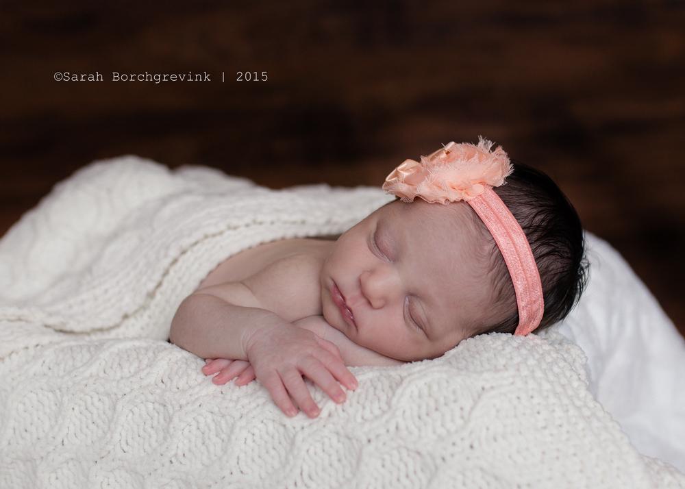 beautiful baby cypress photographer