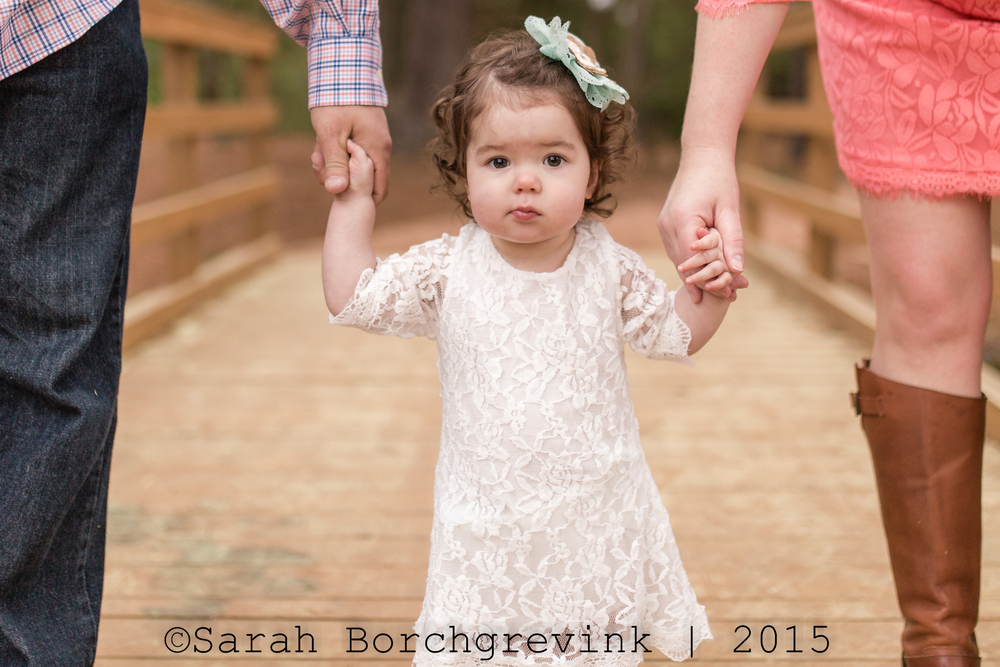 family photographer 77065