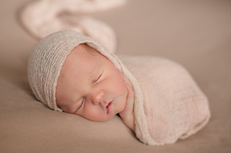 77429 newborn photography