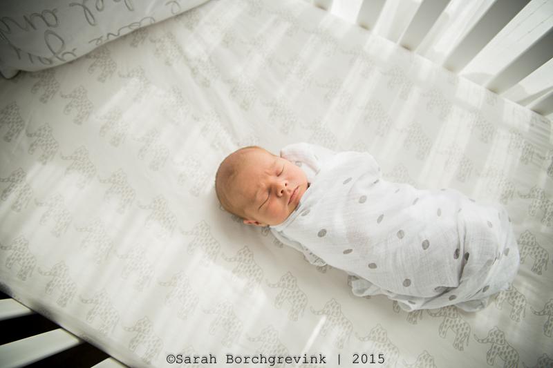 tomball, katy and houston newborn photography