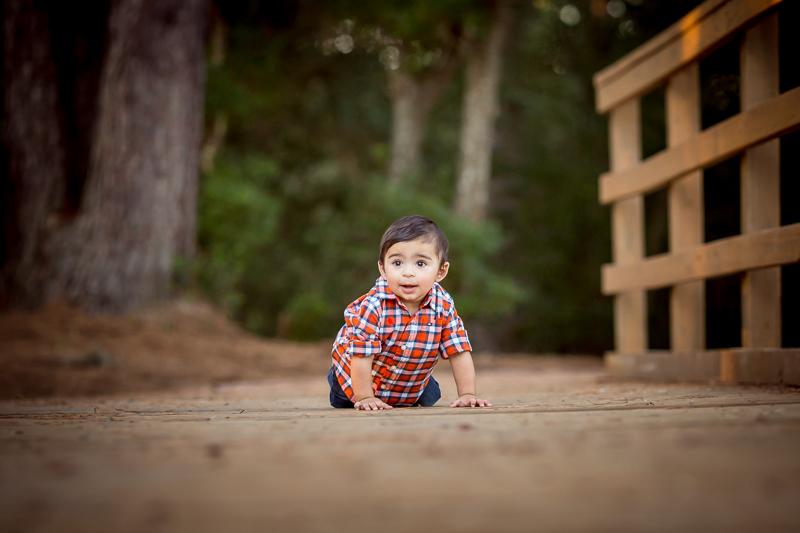 baby photographer houston texas