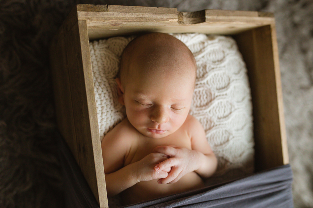 newborn photographer houston
