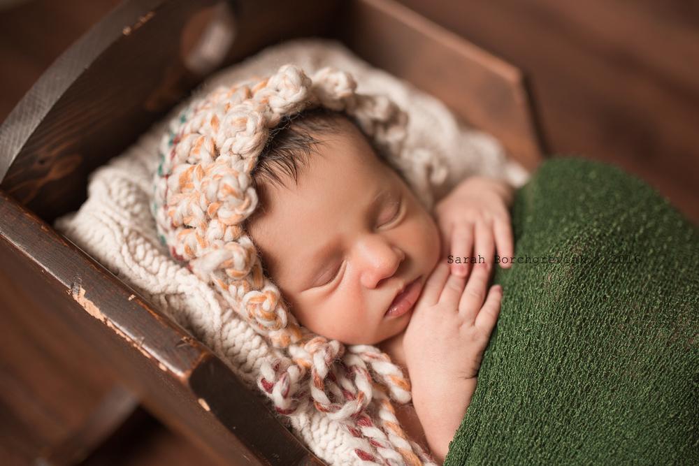 Custom Newborn Photos by Sarah Borchgrevink Photography