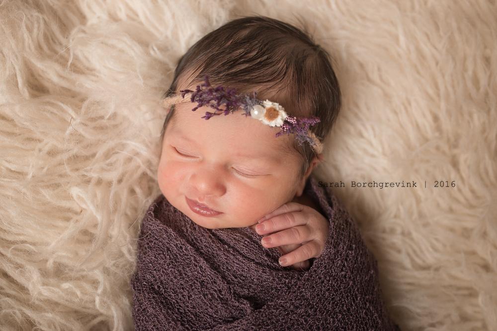 Newborn Photographer 77429