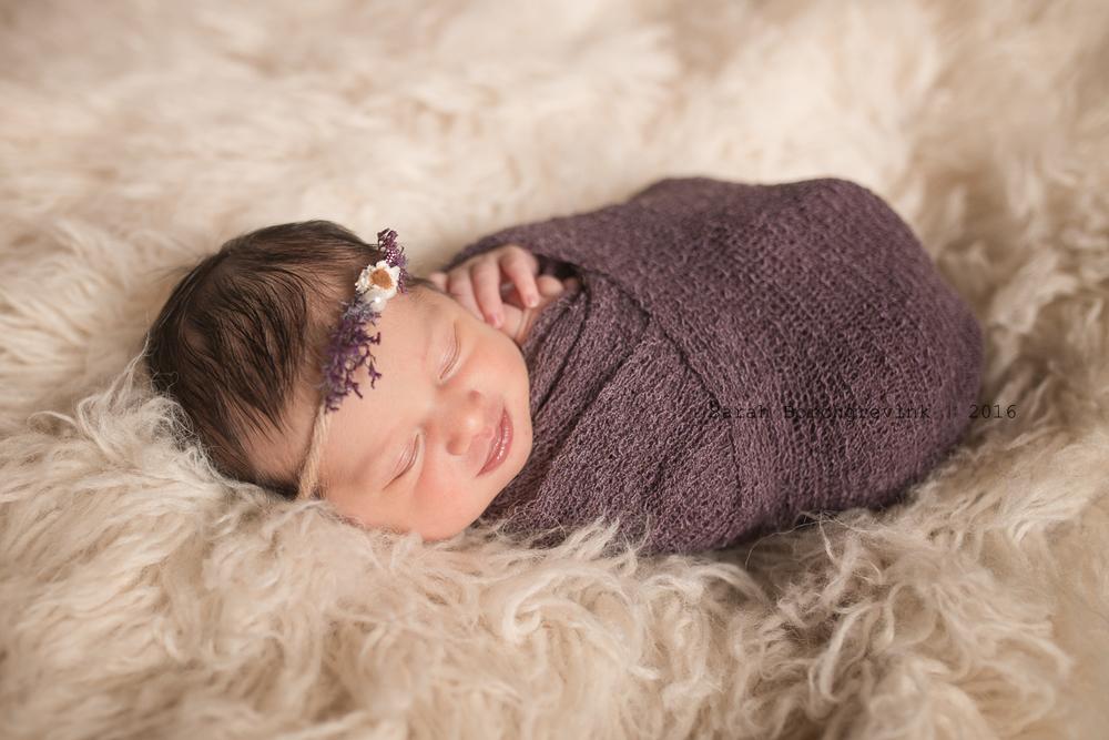 Custom Newborn Photos 77433