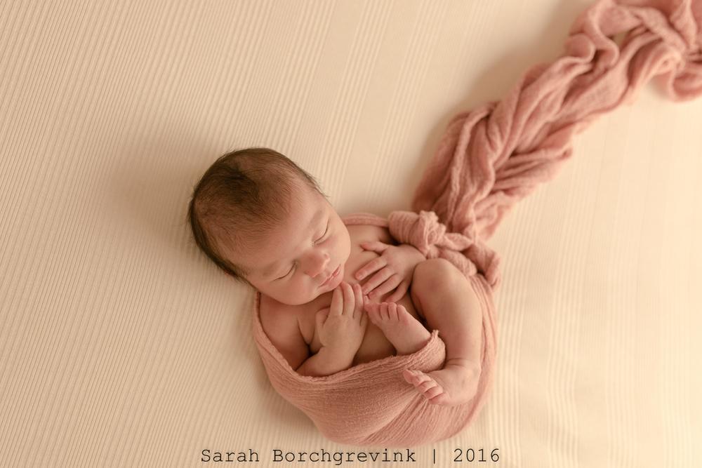 Newborn Pictures in Cypress