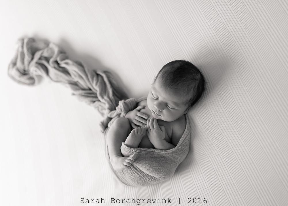 The Best Newborn Photographer Cypress TX