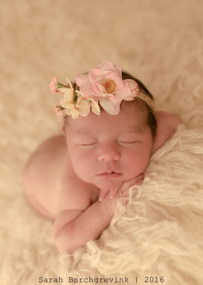 Top Newborn Photographer Cypress TX