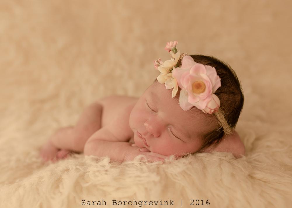 Newborn Photographer in Cypress