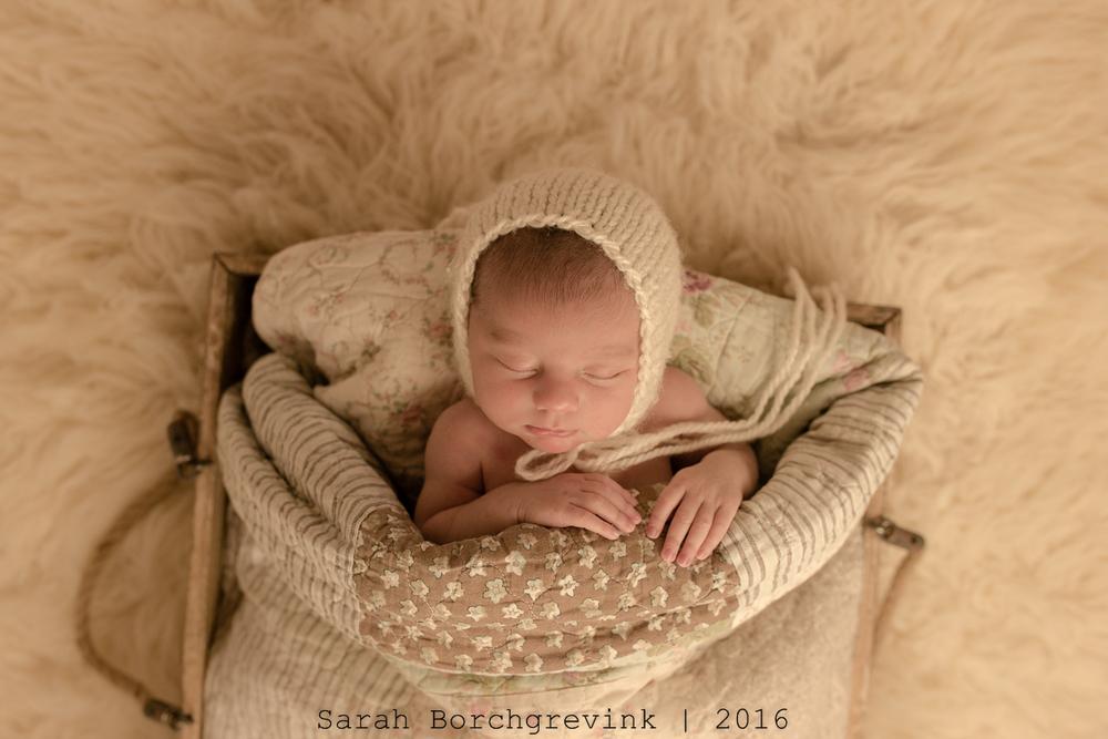 Custom Newborn Photographer Cypress TX 77433
