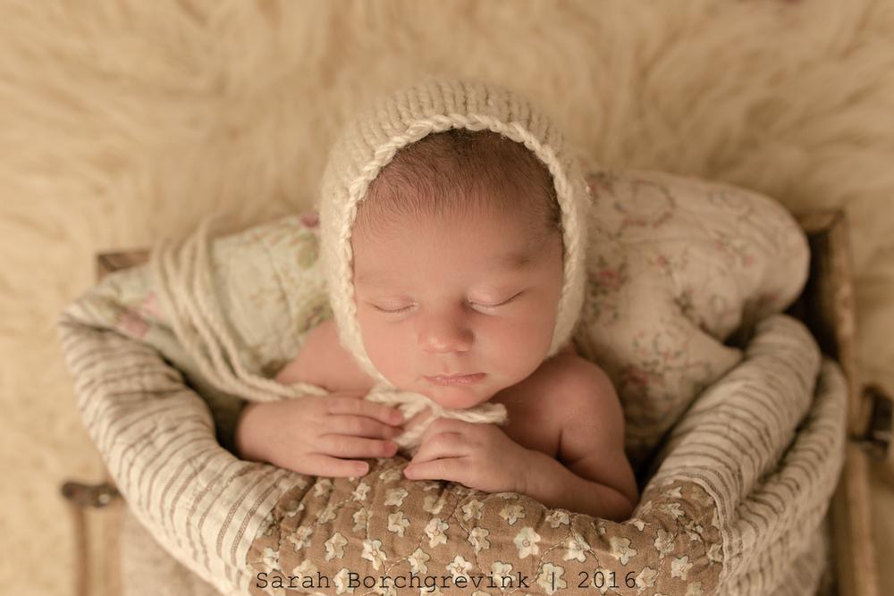 Houston TX Baby Photographer