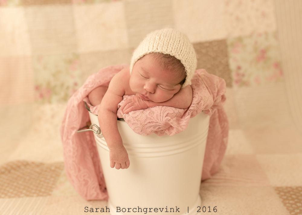 Maternity Photographer Sarah Borchgrevink
