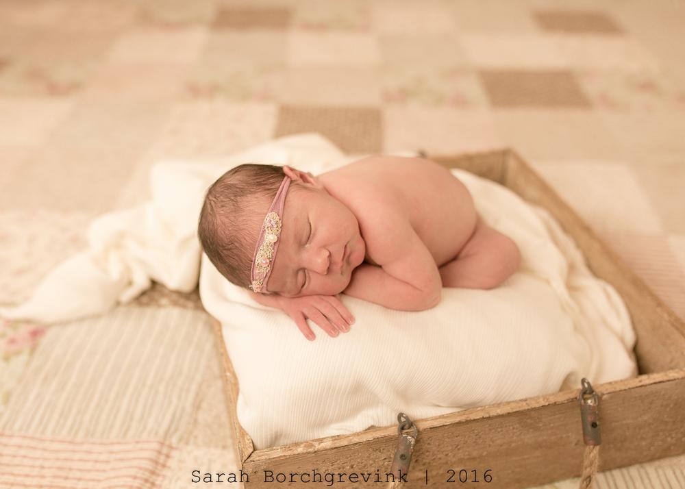 The Woodlands TX Custom Newborn Photography