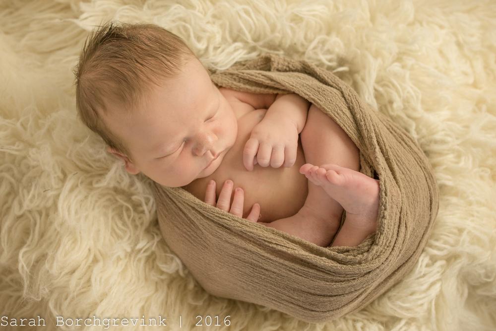 Houston Newborn Baby Pictures
