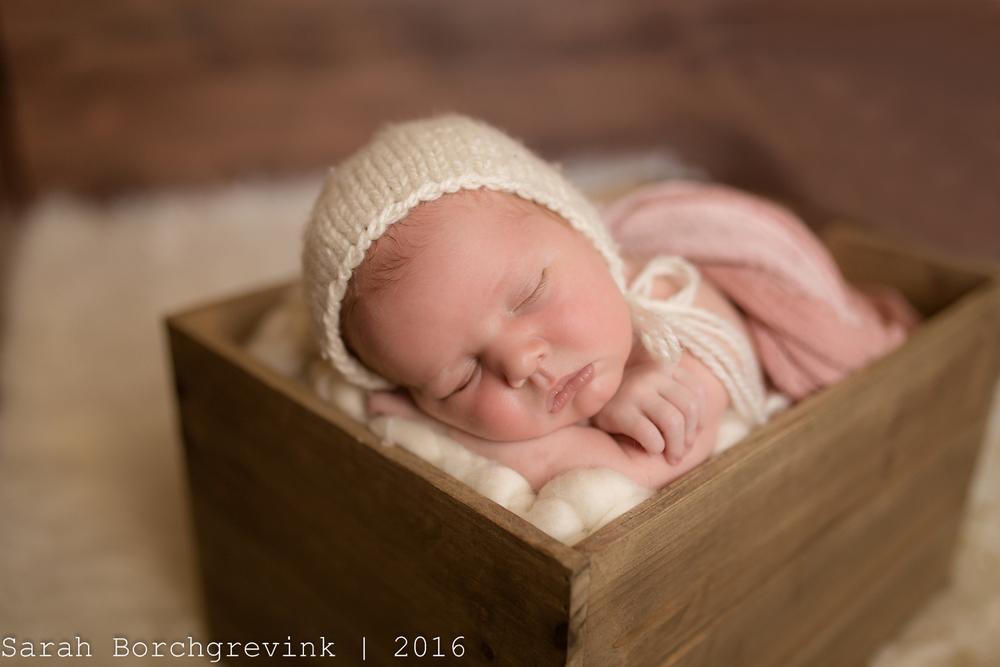 On Location Newborn Photographer | Houston