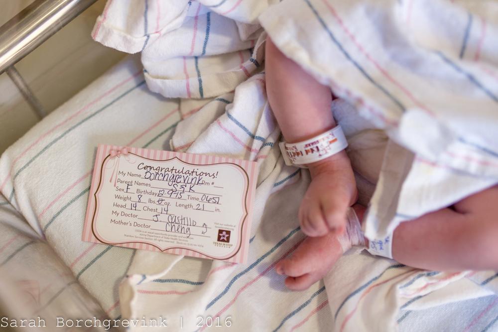 Cy Fair Newborn Photographer