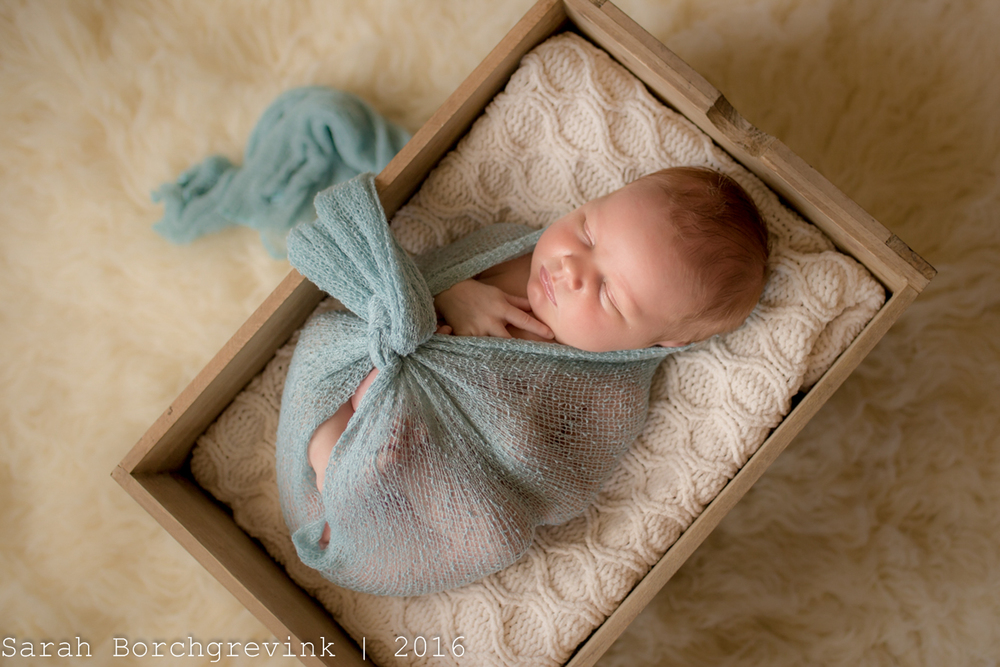 Beautiful Newborn Portraiture | Cypress