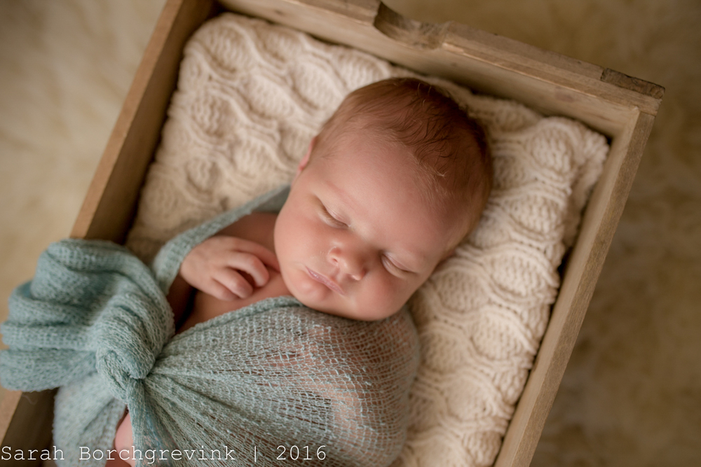 Baby Girl Newborn Photographer | Cypress, Tomball and Spring TX