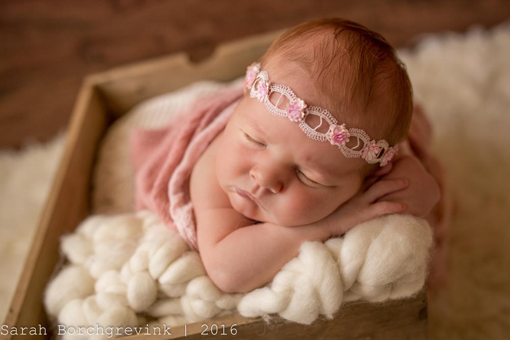 Cypress TX Newborn Photographer | Sarah Borchgrevink