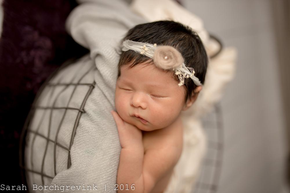 Newborn Photographer Sarah Borchgrevink