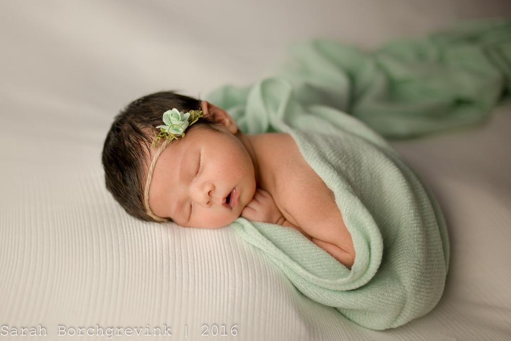 Spring TX Newborn Portraits