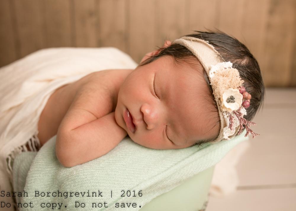 Newborn Photographer   Tomball, Cypress and Katy TX