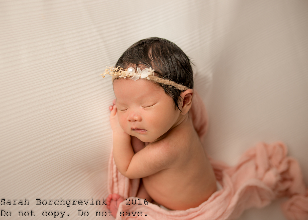 Newborn Photographer   Katy and Cinco Ranch