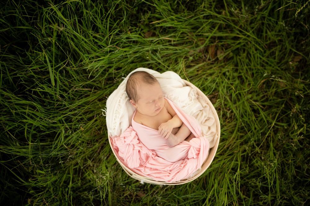 Cypress TX Newborn Photographer   Serving the Houston Region