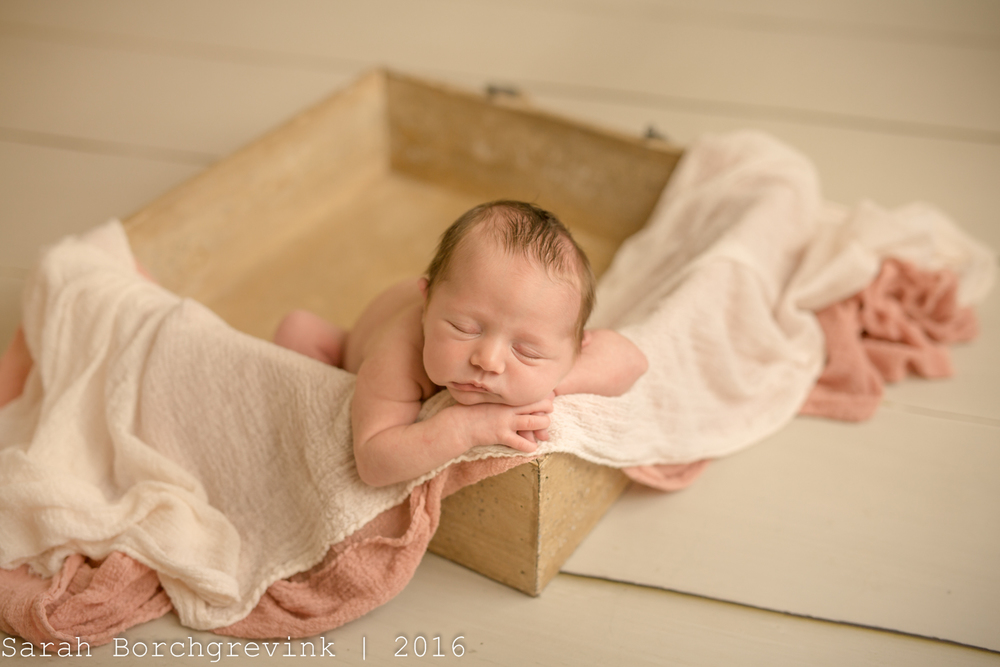 Vintage Newborn Photographer