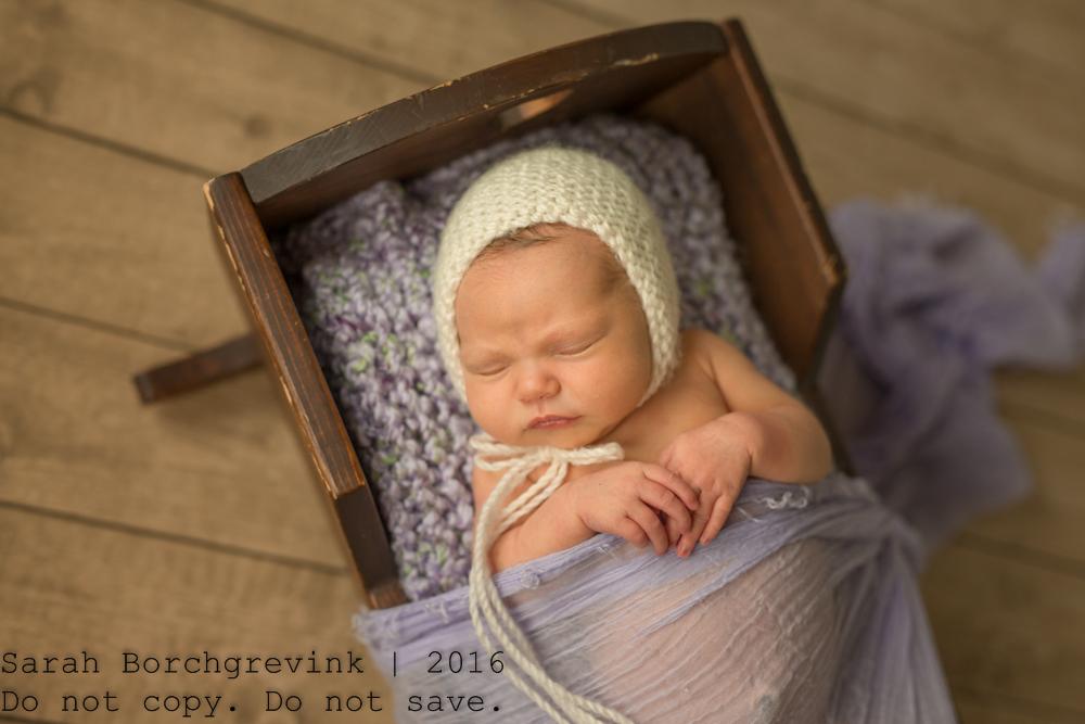 Spring TX Maternity and Newborn Portraiture
