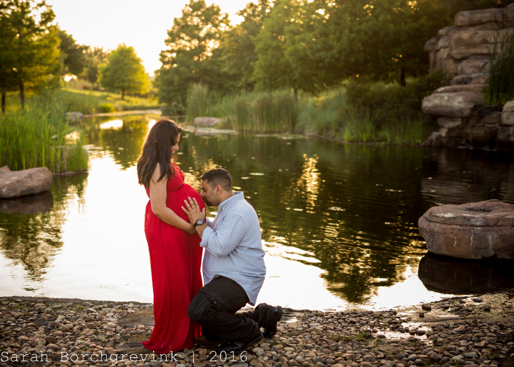 Maternity Photographer Houston