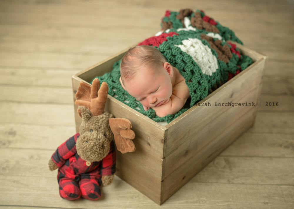 Newborn Photographer Spring