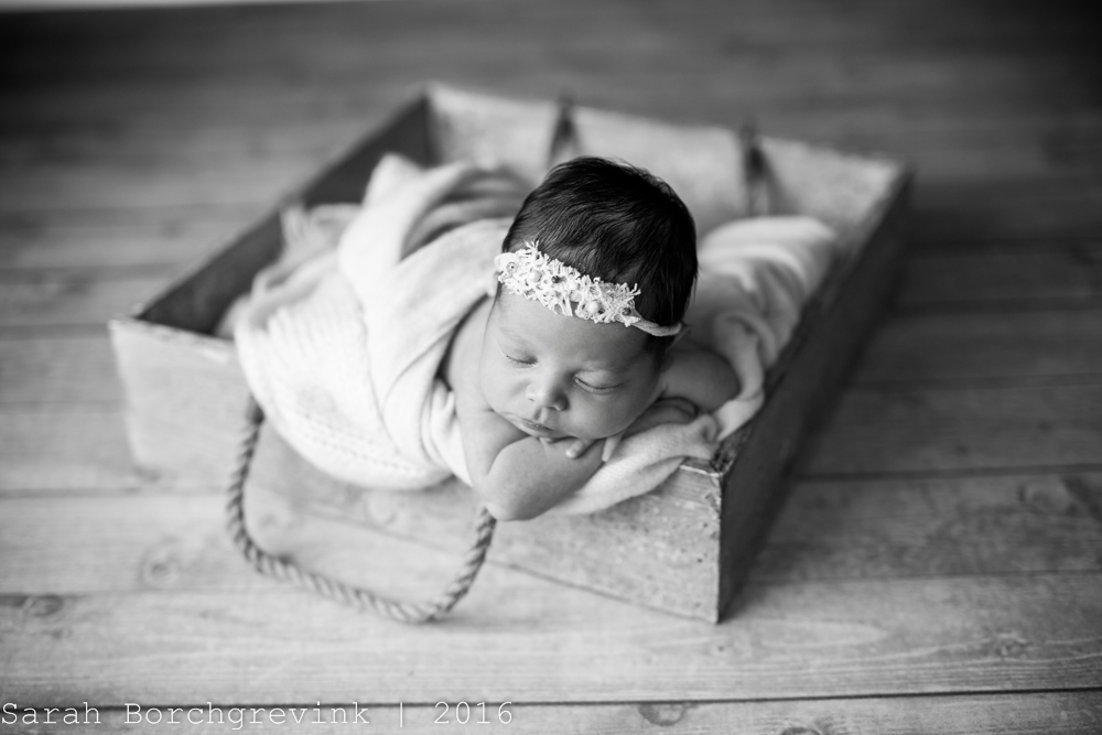 Sarah Borchgrevink Photography | Houston Newborn Portrait Photographer