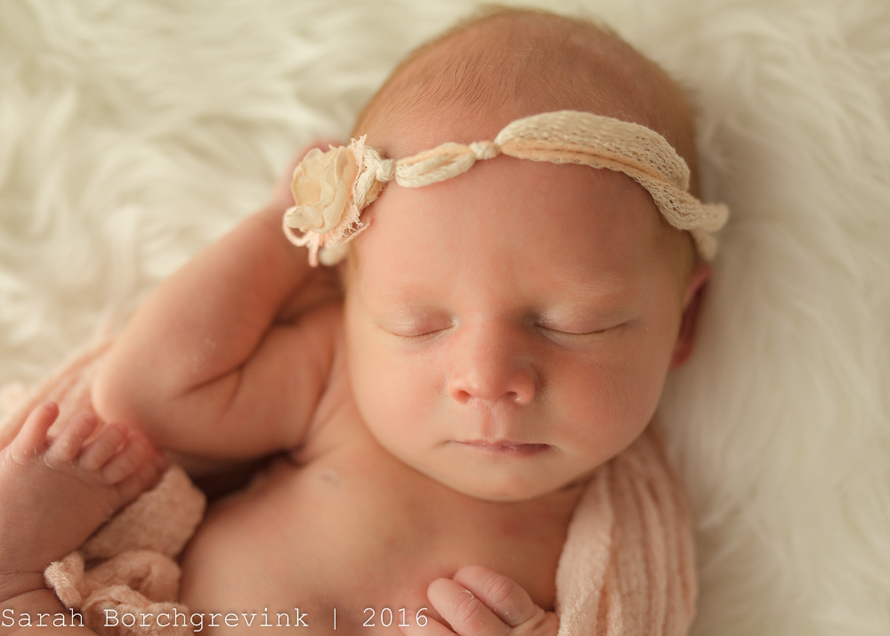 Katy Photographer | Maternity and Newborn