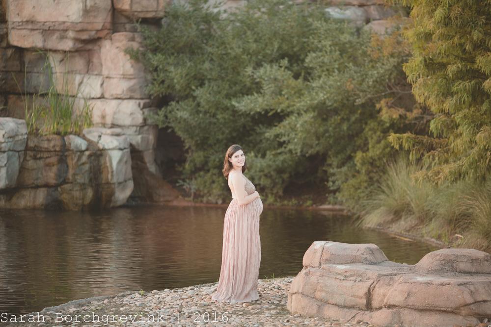 Houston Newborn Photographer Sarah Borchgrevink
