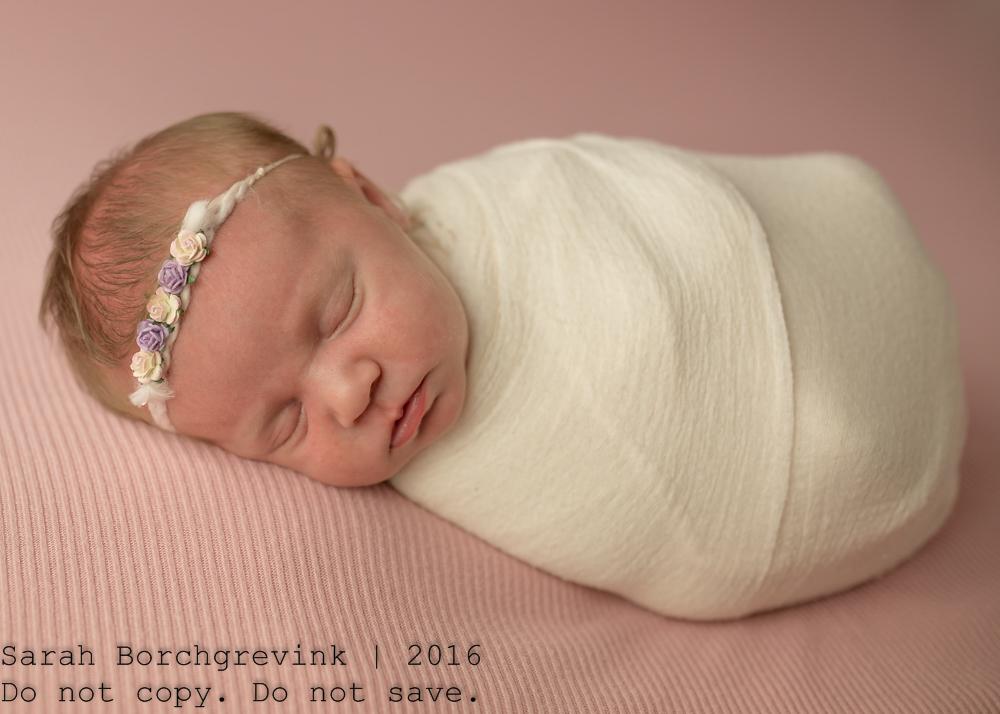 Magnolia Newborn Photographer