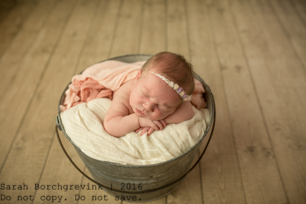 Cypress Newborn Pictures