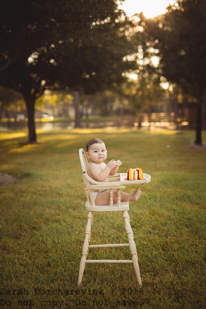 Houston TX Children's Photographer
