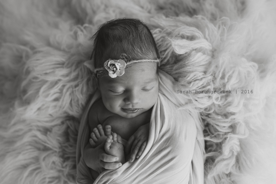 Cypress Baby Portraits