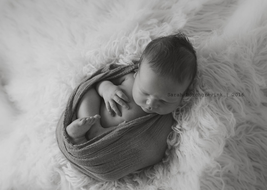 Northwest Houston Newborn Photography | Sarah Borchgrevink
