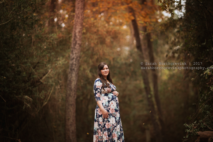 Houston Maternity Portraits   Cypress, Katy, Tomball and The Woodlands