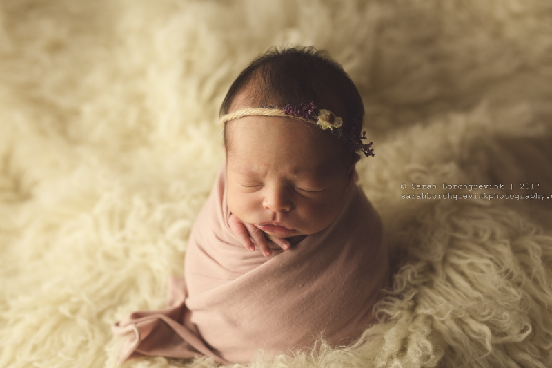 Maternity Photographer Houston TX