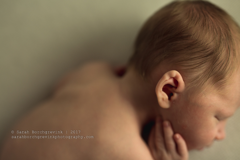 Houston Newborn Photographer | Gorgeous Newborn Photography by Sarah Borchgrevink