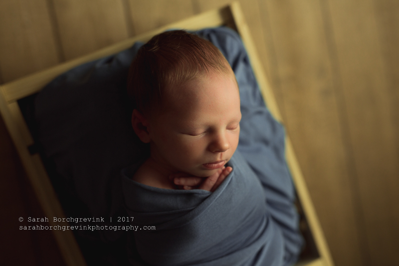 The Woodlands Family & Baby Photographer | Houston TX Newborn Portraits