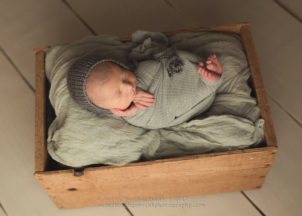 Tomball TX Family & Newborn Baby Photographers | Sarah Borchgrevink - Houston Photography