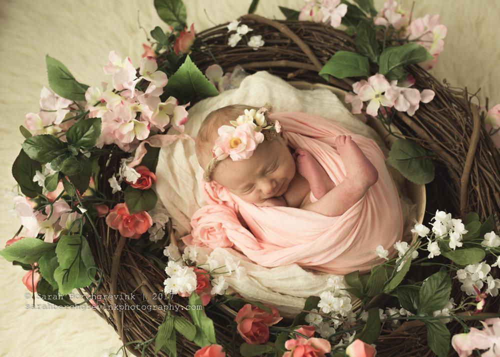 Spring TX Newborn Photography | Sarah Borchgrevink