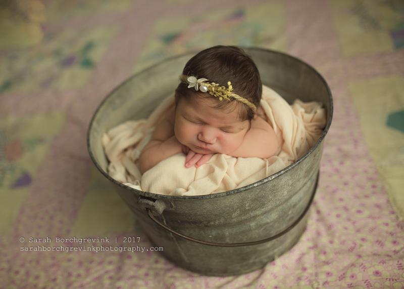 Rice Village & Houston Newborn Baby Portraits