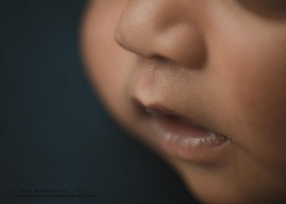 Newborn Photography Tomball TX | Sarah Borchgrevink