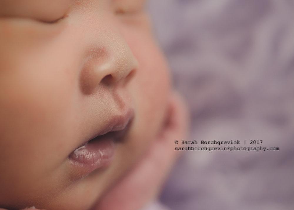 Photography Studio Cypress TX | Sarah Borchgrevink Photography